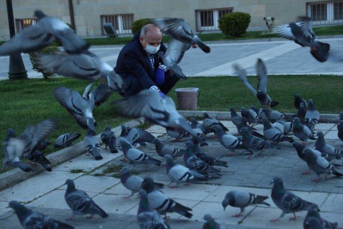 Eskişehir Valisi Çakacak aç kalan sokak hayvanlarını doyurdu