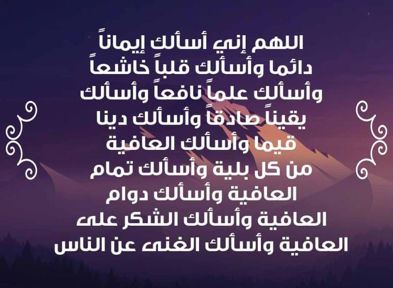 whatsapp-image-2021-01-17-at-15-58-03.jpeg
